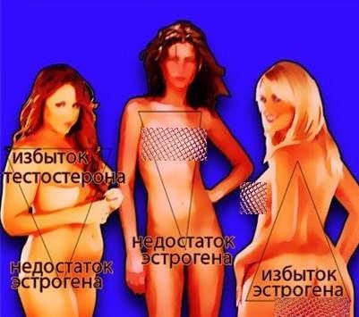 От уровня эстрогена зависит тип фигуры женщины