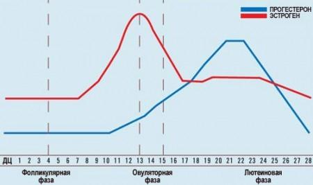 Графики роста прогестерона и эстрогена на разных днях цикла