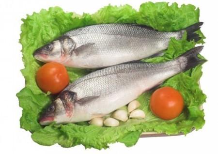 Очень полезна жирная морская рыба