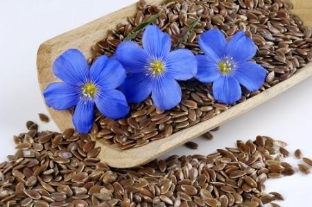 Семена льна - известное народное средство очистки сосудов