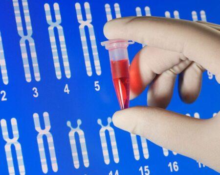 Биохимических анализов крови