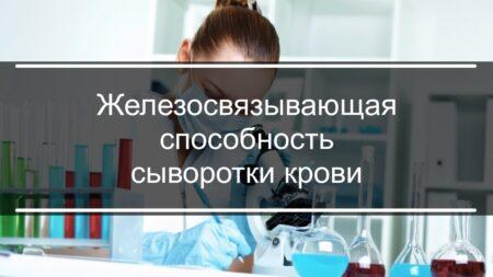 Что такое железосвязывающая способность сыворотки крови?