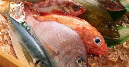 Обязательно надо включать в рацион морскую рыбу